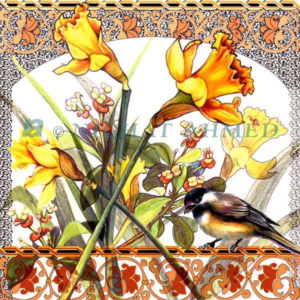 daffodils-w-pattern