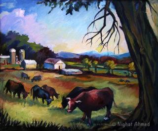 Farm in Frederick